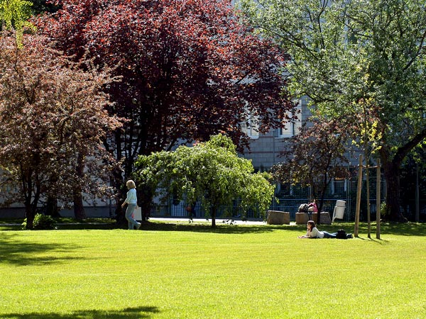 Rifacimento-aree-verdi-cortilive-Modena